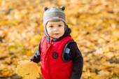 Little  boy playing with yellow leaves in autumn park on sunny d — Stock Photo