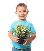 Little boy holding plant — Stock Photo
