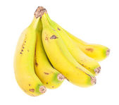 Bunch of bananas on white — Stock Photo