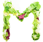 """Letter """"M"""" made from leaves — Stock Photo"""