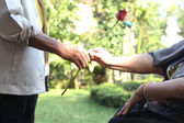 Husband giving rose to his wife — Foto de Stock