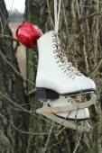 Pair of White Ice Skates hanging on the tree — Stockfoto
