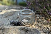Lantern and autumn heather — Stock Photo