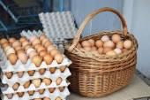 Land-Eier — Stockfoto
