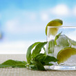 Mojito cocktail drink. Glasses with lime ice, and leaf of mint — Stock Photo #55833299