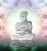 Buddha in peaceful meditation — Stock Photo