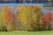 Jones Pond in Gouldsboro — Stock Photo