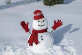 Divertido muñeco de nieve en su traje rojo — Foto de Stock
