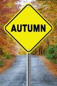 Autumn cautionary road sign against a fall background — Stock Photo