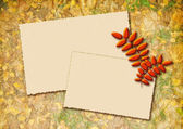 Stylized autumn background with two frames for text — Stock Photo