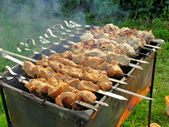 Shish kebab on a brazier — Stock Photo
