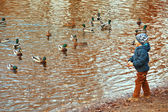 Little boy feeding ducks, standing at waters edge — Stock Photo