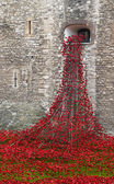 London, UK - October 18, 2014: Art installation 'Blood Swept Lan — Stock Photo