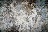 Fondo grunge muro de hormigón — Foto de Stock