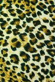 Leopard leather pattern texture background — Photo