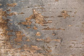 Natural old wood background — Stock Photo