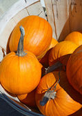 Pumpkins in wooden basket — Stock Photo
