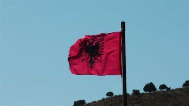 Albania flag fluttering in the wind. — Stockvideo