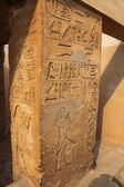 The column with hieroglyphs near the pyramid of Djoser. Egypt. — Stock Photo