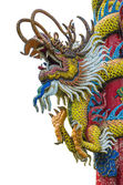 Chinese dragon on the ploe — Stock Photo