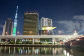 Tokyo, Japan skyline night — Stockfoto