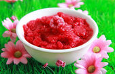 Raspberry sorbet — Stock Photo