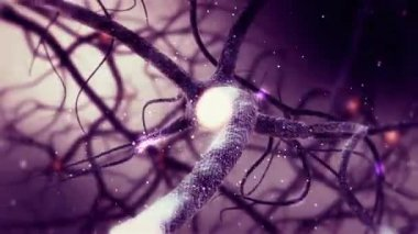 Animation of Real Neuron synapse network. Infinite Loop inside the human brain in Full HD — Stock Video