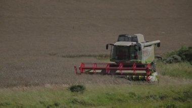 Harvester in France — Stok video