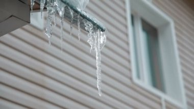 Icicles sparkling with water drops — Stok video
