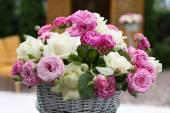 Många rosor — Stockfoto
