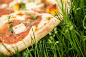 Pizza on grass — Stock Photo