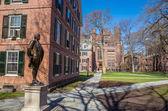 Yale university buildings in spring blue sky — Stockfoto