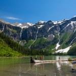 Scenic mountain views, Avalanche Lake, Glacier National Park Mon — Stock Photo #74969759