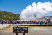 Tourists watching the Old Faithful erupting in Yellowstone Natio — Stock Photo