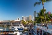 View of Miami Marina and Bayside Marketplace — Stock Photo