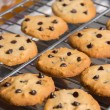 Freshly baked chocolate chip cookies on cooling rack. — Stock Photo #69651289
