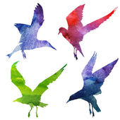 Birds Silhouette. watercolor — Stock Vector