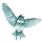 Hand drawn style  bird. — Stock Vector
