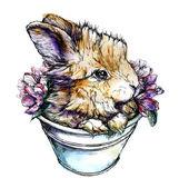 Иллюстрация кролика. Рисованной — Cтоковый вектор