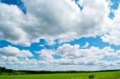 Summer landscape — Stock Photo