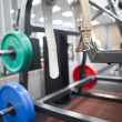Belt and weights for powerlifting — Stock Photo #67636093