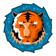 Tiger head. Color vector illustration. — Stock Vector #59685793