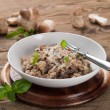 Risotto with wild mushrooms — Stock Photo #53403731