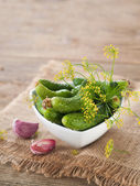 Fresh cucumbers and dill in bowl — Stockfoto