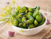 Fresh cucumbers and dill in bowl — Stock Photo