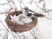 Easter eggs and bird in nest, selective focus — Stockfoto