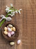 Snowdrop with chocolate egg — Stock Photo