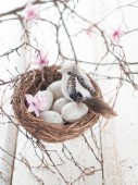 Easter eggs and bird — Stock Photo