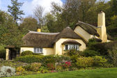 Thatched roof cottage — Stock Photo