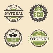 Conjunto de elementos de design eco natural — Fotografia Stock